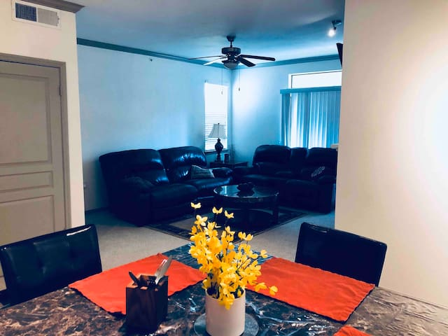 Entireee apartment/TCU/clear fork/downtown/FW zoo