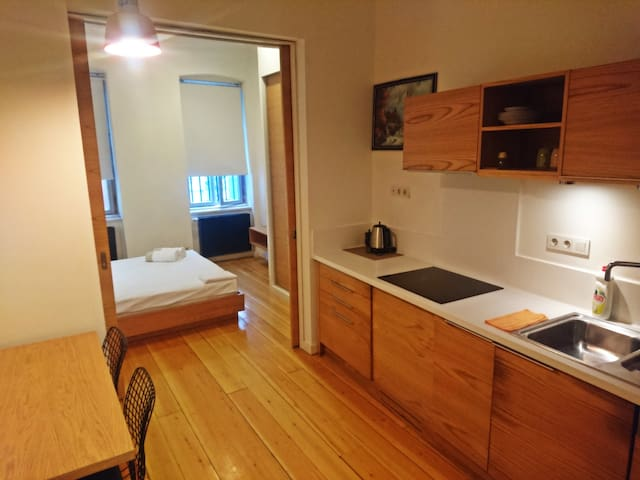 **Large Modern Apartment Near Metro**