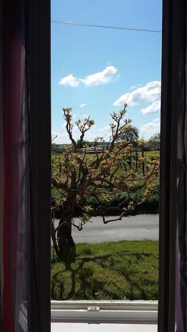 chambre au calme accès indépendant - Sainte-Radegonde - House