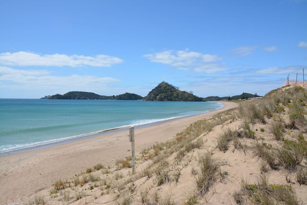 The beautiful Pataua North beach - just at the end of the garden.