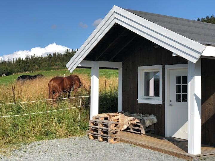 Nye Gåds hytter med mulighet for aktiviteter.