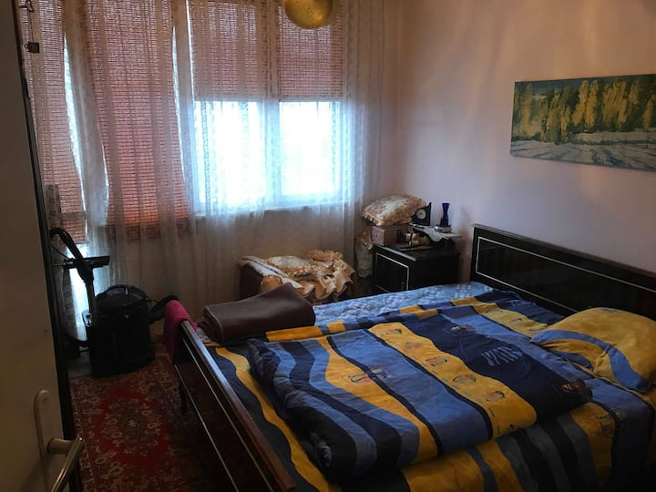 Comfortable Apartment in Kaspichan