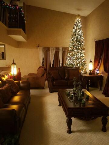 Luxury 3 bedroom Condo - Akron - Casa