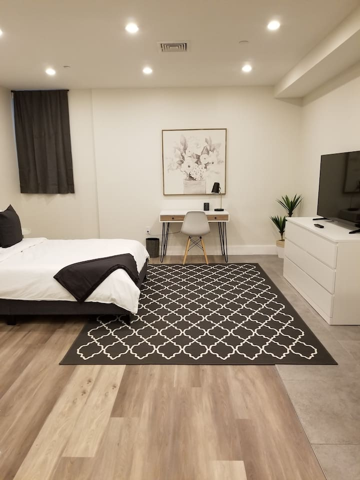 Modern Luxurious Studio Suite in Downtown Albany