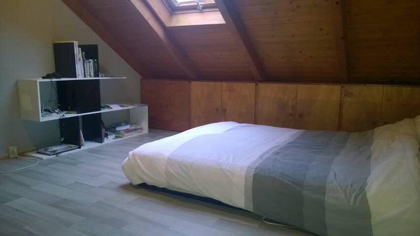 Grande chambre sur 2 niveaux - Štrasburk - Dům