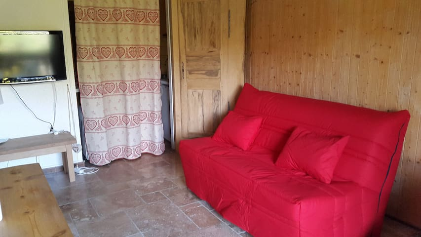 Appartement confortable face au Mont-Blanc
