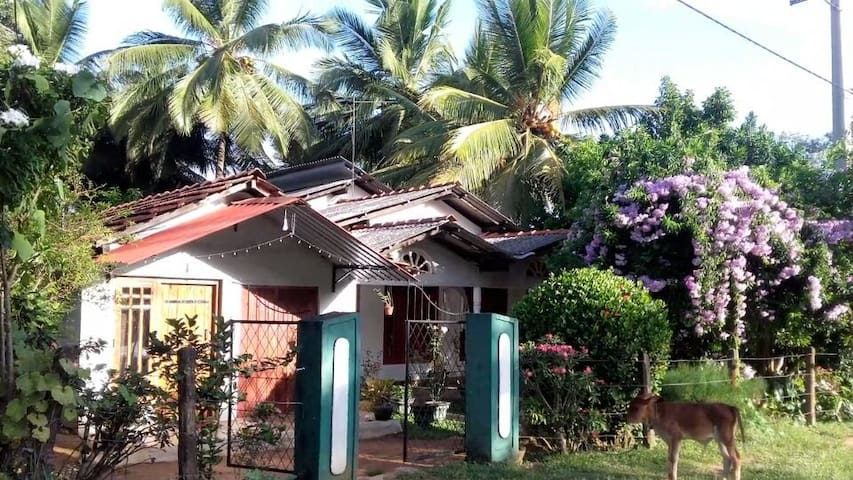 Chathu's  Authentic Homestay