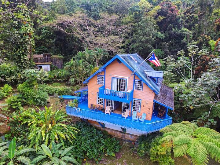 Casa Alice | Chalet House | El Yunque
