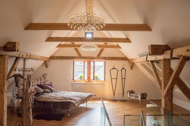 Charmantes Ferienhaus mit privatem Badeplatz - Walchwil - Huis