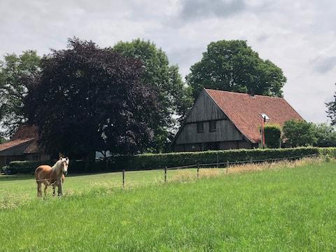 Villa in de velden!