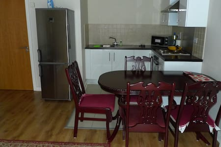 City Center large apartment 48 sq m with a balcony - Dublin