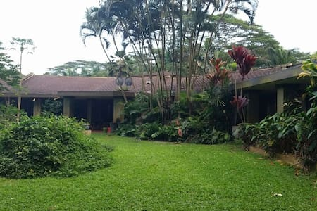 Beautiful estate with orchard. - Kilauea - Hús