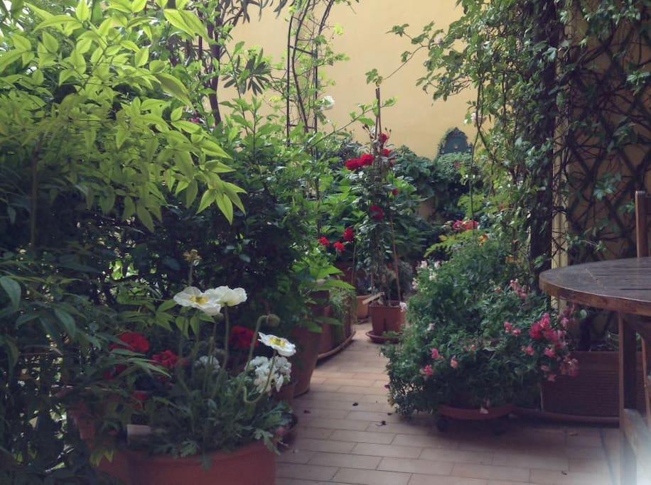 Il Terrazzo in primavera. The Terrace in spring time.