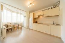 Bright new apartments near airoport Zhulyany