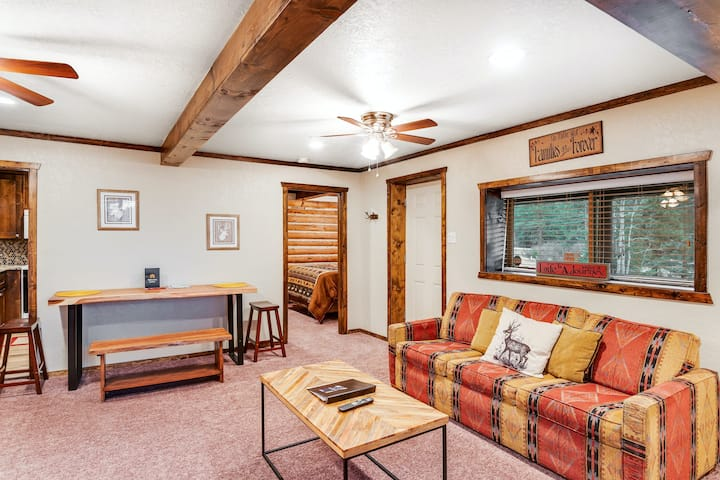 Cabin-Chic Condo with High-Speed WiFi, Gas Fireplace, and Private Washer/Dryer!