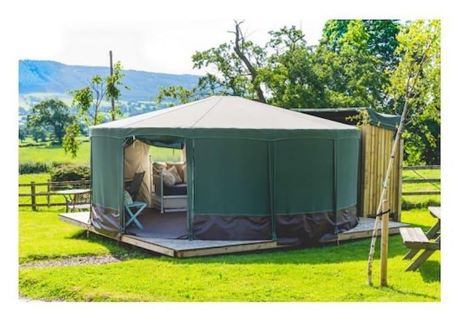 Fabulous B&B Glamping Yurt : No.1