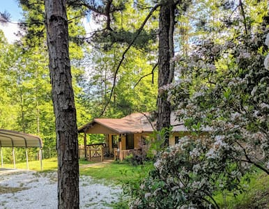 Woodridge Mountain Home on 50+ acres