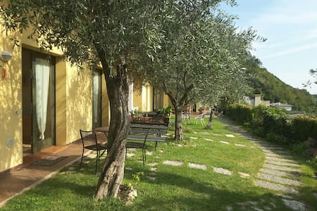 Loft among olive trees-stunnig view and peace - pove del grappa