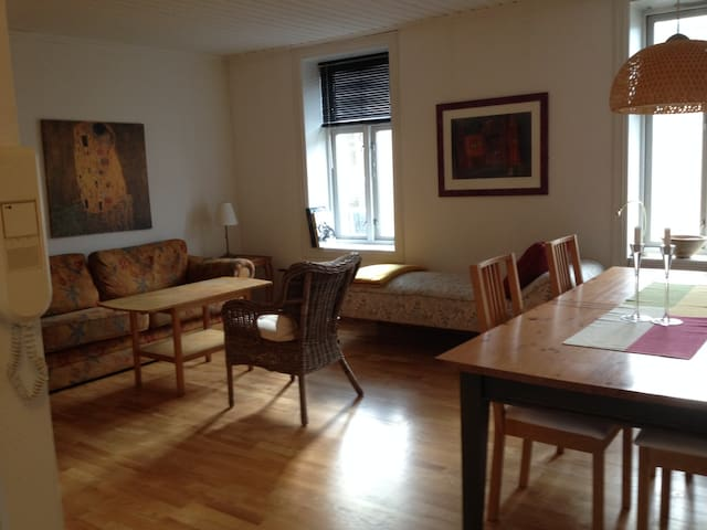 Cosy Apartment in Trondheim Old Town - Bakklandet