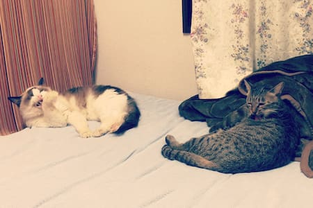 Single bedroom for ANIMAL L♡VERS - Higashi-Ku, Fukuoka - Rumah