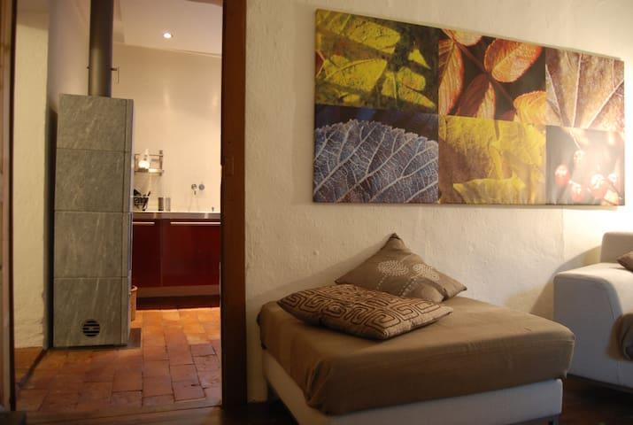 Appartamento in casa a corte nel nucleo di Caslano