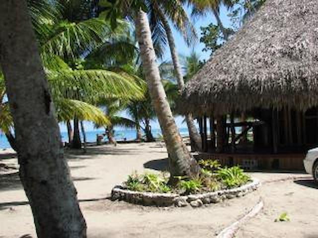 Villa sur une plage sauvage en Rép. dominicaine - Villa Magante - Huoneisto