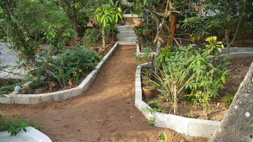 Amritham  Holidays -Homestay - kappukadu-Neyyardam
