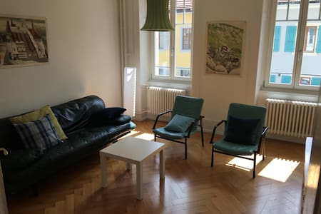 Nice 2 bedrooms and 1 living room. WIFI. - Saint-Imier - 公寓
