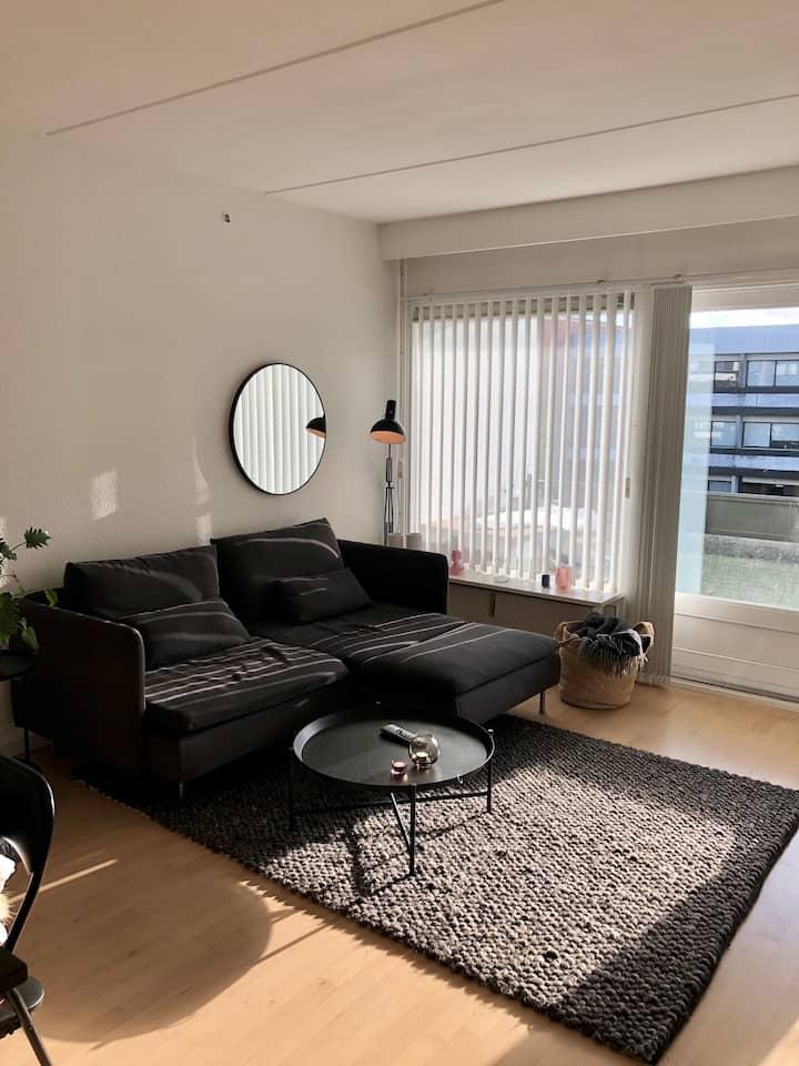Cosy, quiet apartment close to the beach and city