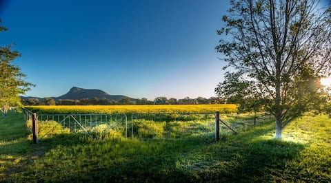 Avalon Farmstay, spacious country home.
