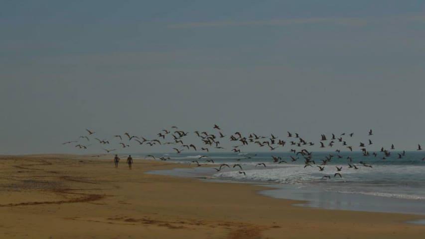 playa del rio Rada, cerca de Dar Fkkrum