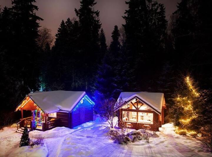 Дом -шале с сауной и беседка с мангалом в лесу