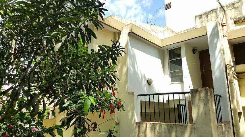 Mango tree garden house