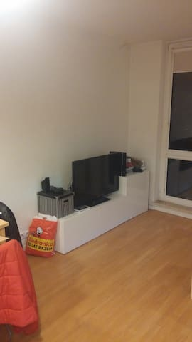 Playstation, nintendo wii and TV for guest