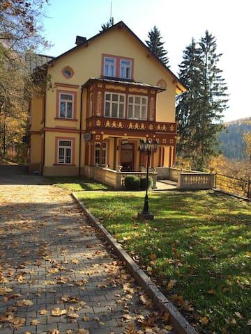 Villa Belvedere - Janské Lázně