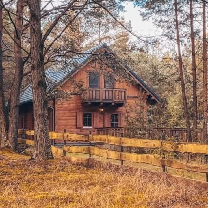 Dom w Borach