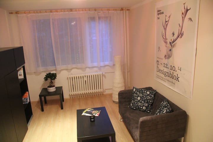 New and freshly renovated flat, just for your own - Praga - Apartament