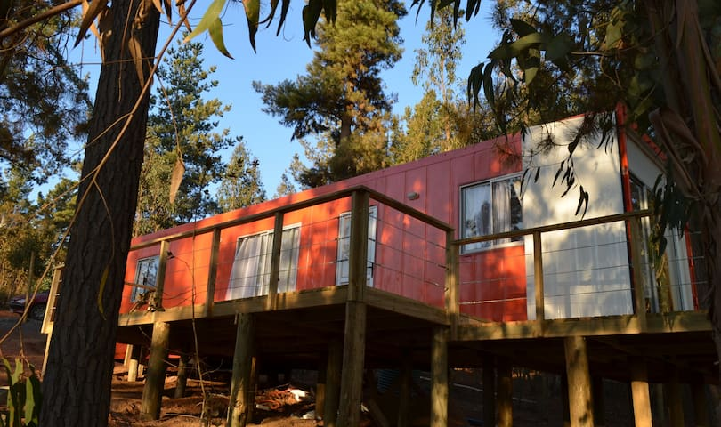 Cabaña Container House en medio del Bosque