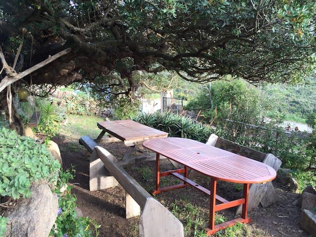 Vacances de rêve à Aqua Doria en Corse - Coti-Chiavari - Huis