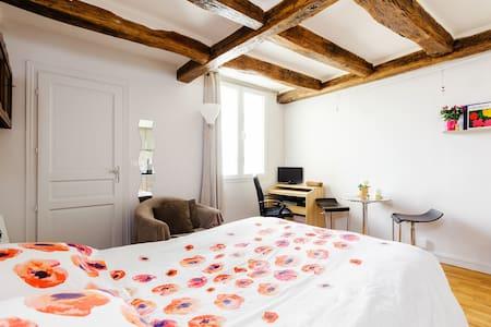 PARIS CENTRE  LE MARAIS cosy studio - Paris - Apartment