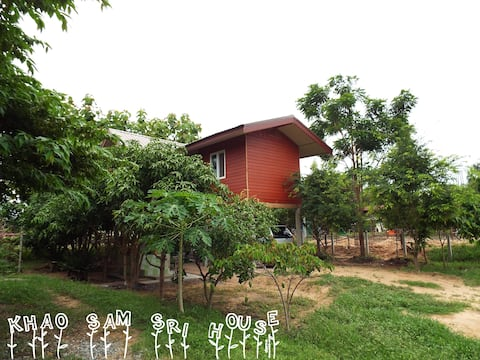 Khao Sam Sri, 2 rooms hidden in the mango trees