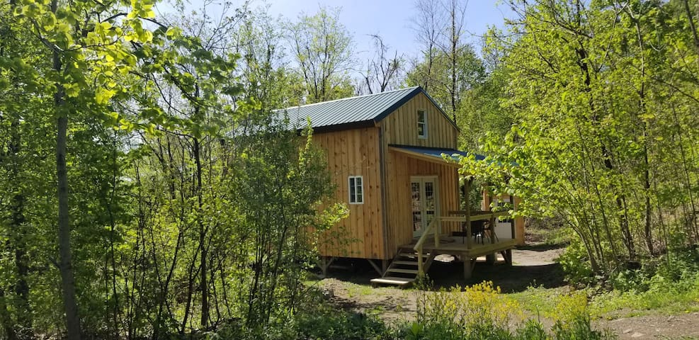Birdsong Cabin. Rustic off grid Glamping in Hebron