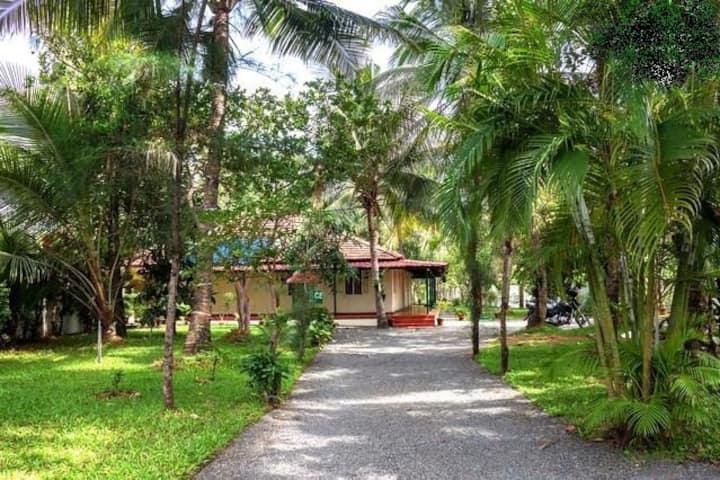 Palm Grove Service Villa-A/C Room@budget price