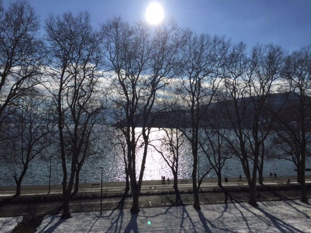 appartment in front of the Annecy Lake - Annecy - Departamento