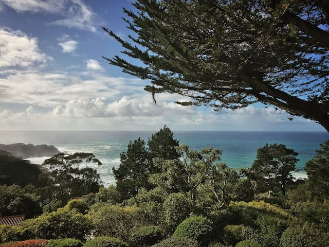 Astonishing views, private Guest Room - Carmel-by-the-Sea - House