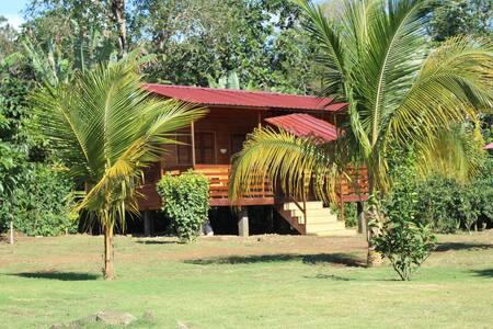 Akwa Ibom Farm