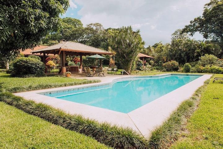 Studio KANTUTA Tropical Paradise