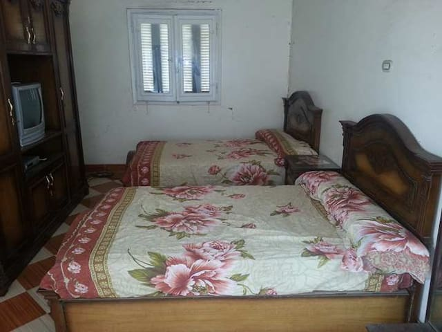 Furnished apartment in port said