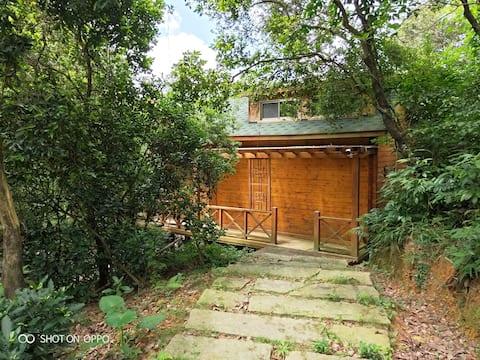 罗浮山原生态木屋别墅,隐没在树林之间,远离都市的喧嚣,吸氧好去处!