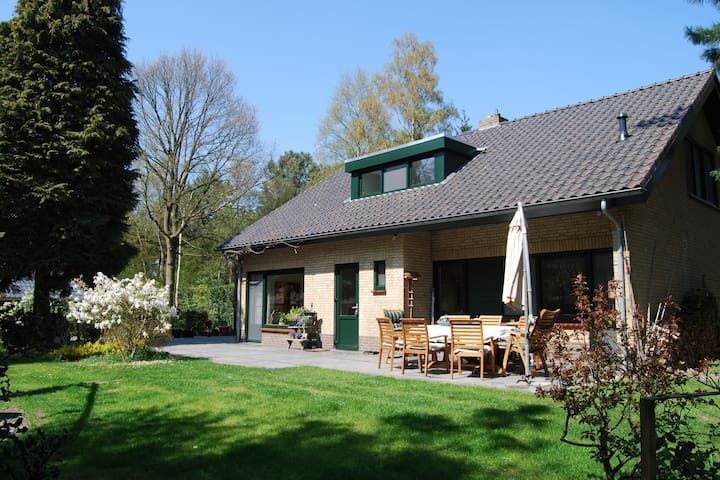 Stunning villa with 1 ha of private forest, a swimming pool, and a sauna